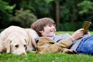 собака и подросток