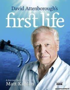 Первая жизнь